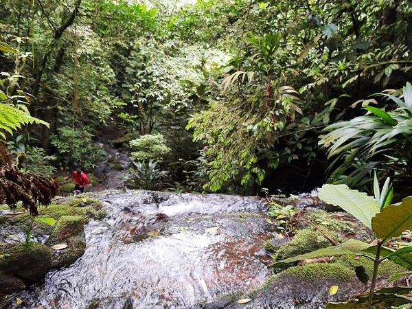 Foto Cachoeira 2-1