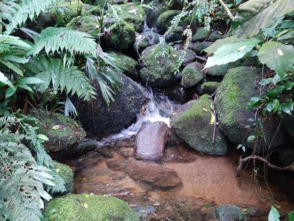 Foto Cachoeira 3-1