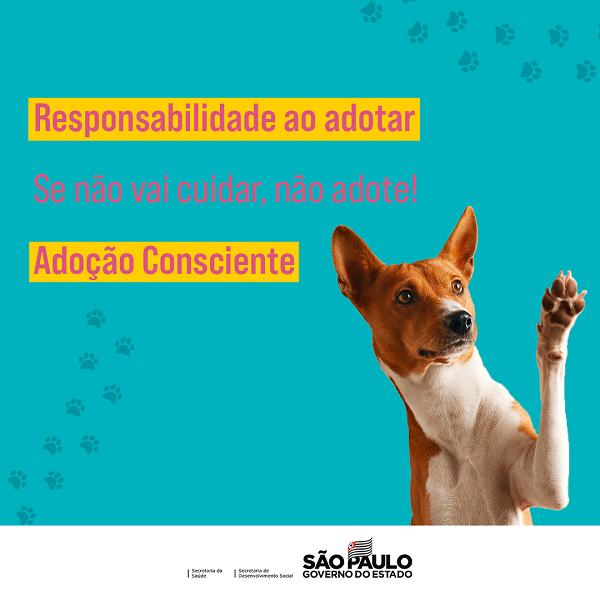 campanha animais govsp 3