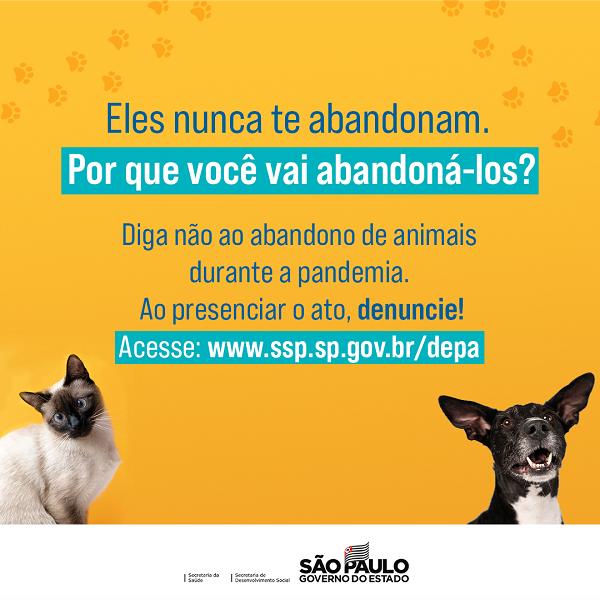 campanha animais govsp 4